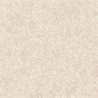 Beige Smooth Texture