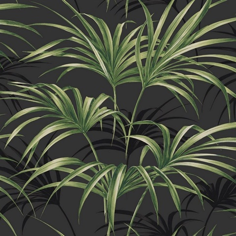 Black & Green Commercial Open Palm Leaf Wallcovering