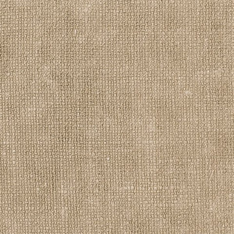 Flax Wheat Texture