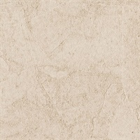 Stucco Plaster Apricot Texture